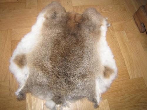 Как в домашних условиях выделать шкурки кроликов